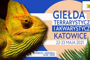 WYDARZENIE Katowice maj.jpg