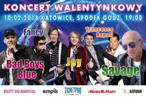 Koncert walentynkowy w Spodku 2018