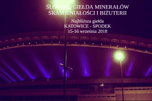 Geoexpo w  Spodku 2018