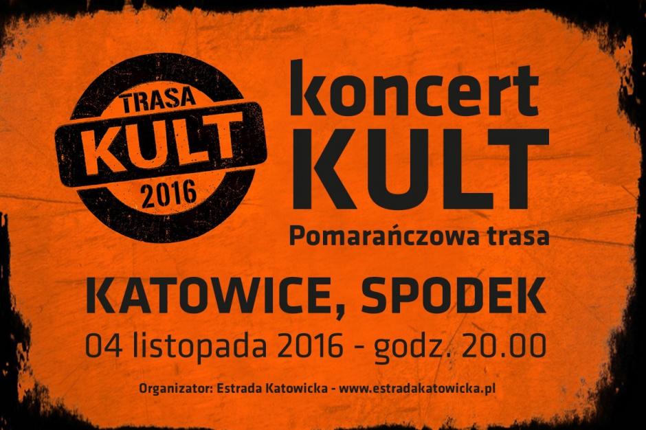 Koncert Kult w Spodku